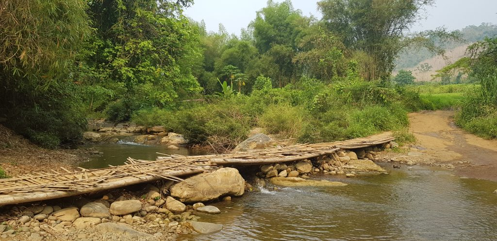 Rickety bamboo bridge I almost didn't get over